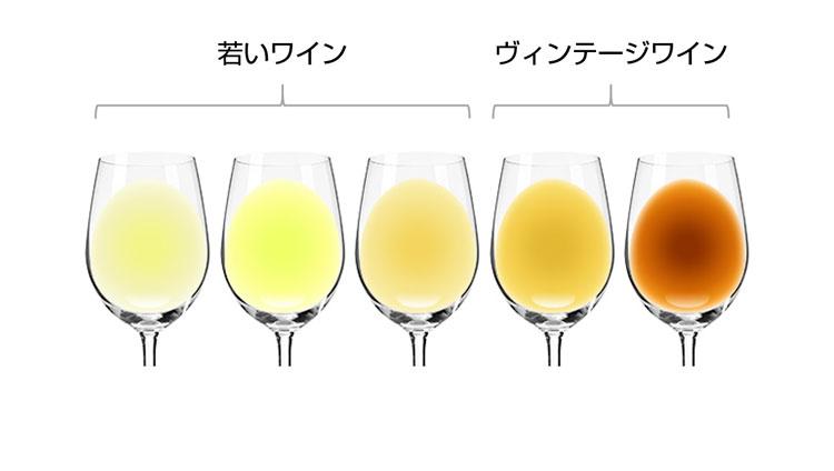 白ワインの色の変化