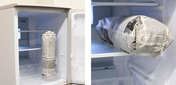 冷蔵庫の手前、ドア側に立てて置く