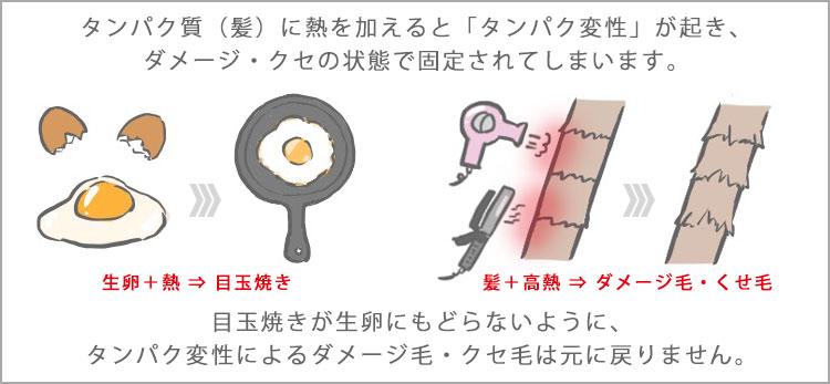 タンパク質(髪)に熱を加えると「タンパク変性」が起き、ダメージ・クセの状態で固定されてしまいます。目玉焼きが生卵に戻らないように、タンパク変性による髪のダメージ・クセは元に戻りません