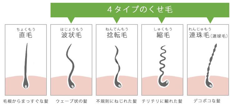 くせ毛の種類を紹介。直毛と比べた時の波状毛・捻転毛・縮毛・連珠毛(連球毛)
